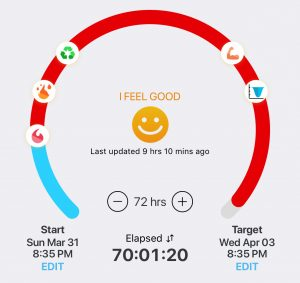 Diagram of progress chart from Life - fasting app